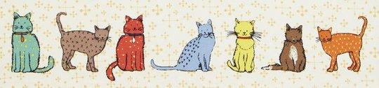 CATWALK-Katten