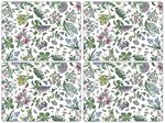 Pimpernel-Portmeirion-placemats-Botanic-Garden-Chintz-kunststof-kurk-set/4
