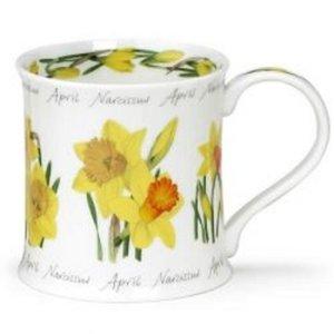 APRIL Flower of the Month NARCISSUS bloem van de maand April