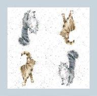 papieren-servetten-Wrendale-LADY_OF_THE_HOUSE-kattenrassen-CATS-katten-lunch-diner-paper_napkins-33x33cm-design-Hannah_Dale-K01