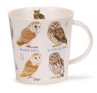 Cairngorm-XL-beker-mok-birds-eggs-owl-uilen-480ml