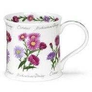 beker-bloem-maand-OCTOBER-oktober-Asters-paars-roze-fbC-beker-theetipje