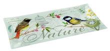 Nuova-Cakeschaal-vogels-NATURE-OISEAUX