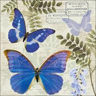 Ambiente-papieren-servet-paper-napkin-BLUE-MORPHO-butterfly-vlinder-33x33cm-blauwe-regen-Wisteria_Sinensis-plant-struik
