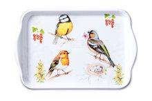Ambiente-kunststof-dienblad-scatter-tray-small-BIRDS ON TWIG-vogels-tak-13x21cm