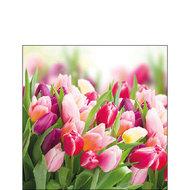 papieren-servetten-GLORIUS-TULIPS-Tulpen-boeket-coctail-p/20-25x25cm-Ambiente-12512730