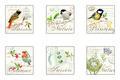 onderzetters-vogels-p/6-oiseaux-kunststof-kurk