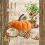 Ambiente-herfst-papieren-servetten-AUTUMN-GARDENING-herfst-tuinieren-pumpkin-pompoen-kalebassen-appelboompje-oranje-bruin-13312