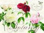 Placemats-kunstof-kurk-corked-Jardin-Botanique-Rozen-Easy Life-Nuova R2S-40x30cm