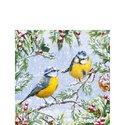 papieren-servetten-cocktail-Ambiente-25x25cm-CHIRPING-BIRDS-vogels-Pimpelmees-dennetak-sneeuw-winter-32511915
