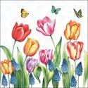 papieren-servetten-p/20-Ambiente-lunch-TULIPS_&_MUSCARI-TULPEN-blauwe-druifjes-vlinders-33x33cm-13311525