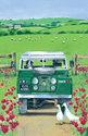 Ulster-Weavers-100%-linnen-theedoek-landrover-jeep