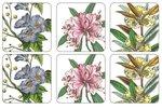 Pimpernel-Portmeirion-onderzetters-STAFFORD_BLOOMS-tuin-planten-bloemen