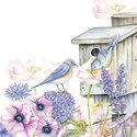 Ambiente-papieren-servetten-BIRDHOUSE-BACKYARD-Vogelhuis-vogels-bloemen-lila-rose-cocktail-servet-25x25cm-12511220