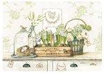 Dunne-placemats-PP-polypropyleen-JARDIN_ROYAL-kist-bloemen-bloembollen-hyacinth-wit-45x30cm-RO350-JARO