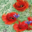 papieren-servet-cocktail-PAINTED_POPPIES- GREEN-p/20-25x25cm-Klaproos-Krorenbloem-12514210