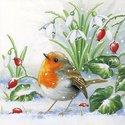Ambiente-papieren-lunch-servetten-ROBIN-Roodborstje-Sneeuwklokjes-Rozenbottels-sneeuw-33x33cm-33304560