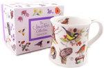 Dunoon-fbC-beker-giftbox-BIRDLIFE-zangvogels-Roodborstje-Koolmeesje