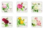 Nu0va-onderzetters-rozen-jardin