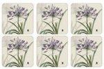 Onderzetters-Pimpernel-RHS-Agapanthus-purple-set/6