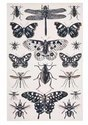Ulster-Weavers-katoenen-theedoek-Butterfly-Collection-vlinders-insekten-zwart-wit