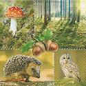 papieren-servetten-paper+design-forest-nature-bos-natuur-25x25cm