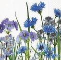 papieren-servetten-25x25cm-bloemen-blauw-Korenbloem-BLUE-MEADOW-flowers-Paper+Design-100030-