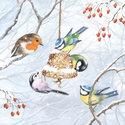 Ambiente-papieren-servetten-WINTER-BIRDS-vogels-pimpelmees,roodborstje-vetbol-25x25cm