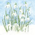 Ambiente-papieren-servetten-SNOWDROPS-Sneeuwklokjes-33x33cm