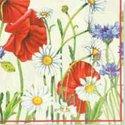 papieren-servetten-Nouveau-bloemen-FLOWERFIELD-cream-Margrieten-Klaprozen-Korenbloemen-33x33cm