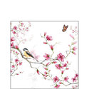 papieren-servetten-p/20-Ambiente-cocktail-BIRD & BLOSSOM-vogel-bloesem-Koolmees-25x25cm