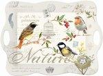 Nuova-melamine-dienblad-45x31cm-oiseaux-vogels-
