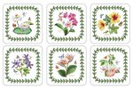 Pimpernel-Portmeirion-onderzetters-Exotic-botanic-garden-exotische-bloemen