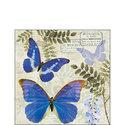 Ambiente-papieren-servet-paper-napkin-BLUE-MORPHO-butterfly-vlinder-25x25cm-blauwe-regen-Wisteria_Sinensis-plant-struik