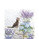 papieren-servetten-p/20-Ambiente-cocktail-KITTEN-jong-katje-bloemen-flowers-summer-zomer-25x25cm-12509990