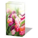 Ambiente-papieren-zakdoekjes-tissue-GLORIOUS-TULIPS-rose-rood-paars-Tulpen