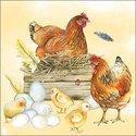 papieren-servetten-Ambiente-lunch-diner-BREEDING-CHICKEN-broeden-bruin-kip-nest-kuiken-eieren-33x33cm-13312820