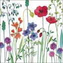 Ambiente-Papieren-servetten-lunch-diner-MEADOW-FLOWERS-weidebloemen-klaproos-klaver-grassen-33x33cm-13311755
