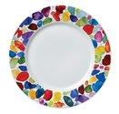 Dunoon-bord-plate-22cm-BLOBS!-Paint-dots-gekleurde-verf-klodders